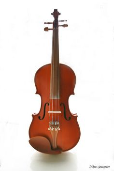 Violin;    The Violin family (also called viola da braccio, or lira da braccio family) of musical instruments was developed in Italy in the sixteenth century. The modern violin family consists of the violin, viola and cello, along with the double bassa Create, record and share the music you create anywhere to friends, family