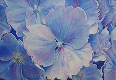Original Watercolor Painting, art,Hydrangea, flower, floral, summer, bush, blue, purple, wall art, home decor, office, blossom, archival mat