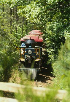 NCMLS   NC Museum of Life and Science: Ellerbee Creek Railway at the NCMLS