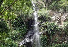 Cachoeira da Pinga (Portalegre - RN) No interior do Rio Grande do Norte, a pequena cidade e Portalegre é famosa por possui diversas cachoeiras, uma das mais famosas é a do Pinga, dua queda d'água tem 36 metros de altura.