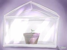 Imagen titulada Start a Bonsai Tree Step 15