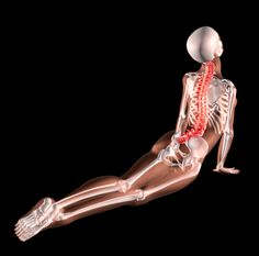 Wondering if yoga can help back pain?