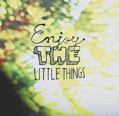 Enjoy the little things green quote