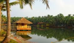 Best time to visit Padanna Backwaters Kerala