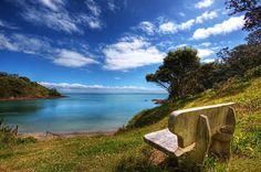 21 Reasons Waiheke Island Is One Of The Top Travel Destinations On Earth