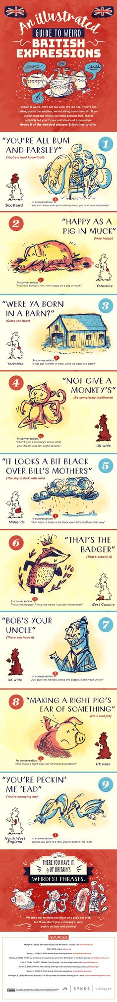 "A beautifully illustrated infographic explaining what phrases like ""You're all bum and parsley"" and ""That's the badger"" mean and how they should be used - in case you didn't think Britain already had enough weird turns of phrase."