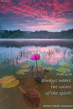Daily Inspiration  Spiritual Healing  Quotes