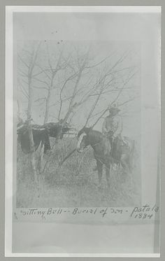 Sitting Bull on horseback, tree burial of son - Patala, 1884