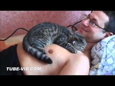 Cats and babies cuddling – Cute cat and baby compilation - YouTube