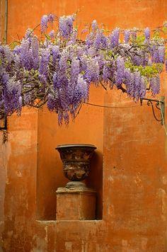 Via Margutta in Rome