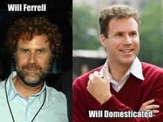 Will Ferrell :p lolllll feral Ferrell punny Celebrity Name Puns, Funny Celebrity Memes, Will Ferrell, Uber Humor, Look Here, Funny Posts, Best Funny Pictures, Funny Images, Laugh Out Loud
