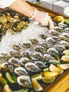 Raw bars are always a hit! Guests will surround the fresh oysters the second they're put out at your reception.