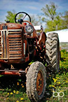 How many miles of soil has this tractor plowed. Farmall Tractors, Old Tractors, Antique Tractors, Vintage Tractors, Blur Background Photography, Car Photography, Best Photo Background, Background Images, Blurred Background