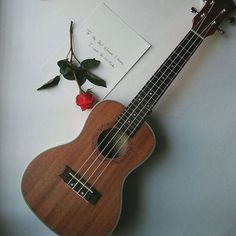 """#Repost @abayaholic  The only thing I remember mentioning to him months back was that I've always wanted to play strings and that Ukulele is one of them.  The next thing I find on a Friday night was a box hidden under the blanket with my eyes speechless and him saying """" I knew you've always wanted one. So i kinda saved up just to see that smile on your face"""".   @abidkhn life is beyond beautiful with you by my side. Thank you for everything best friend. Trust me when I say that you complete…"""