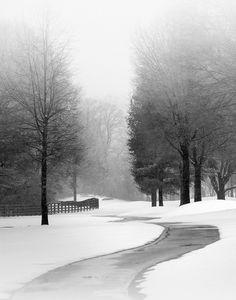Willow Creek - Nicholas Bell