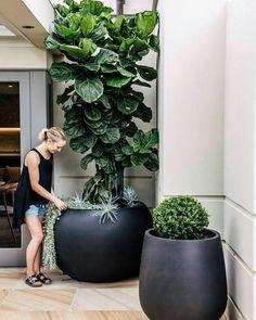Vasos enormes para área livre, varandas, terraços e quintais #vaso #jardins #varanda #quintal