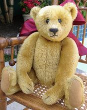 A Rare  & Pristine 1909 Gold Steiff Teddy Bear w/Button