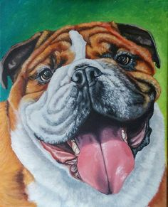 Custom Pet Portrait Personalized Pet Portrait Bulldog