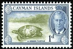 King George VI Cayman Islands 1950