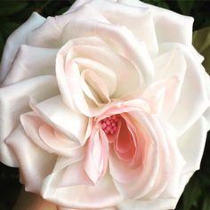 Un preferito personale dal mio negozio Etsy https://www.etsy.com/it/listing/494403354/handmade-silk-rose-brooch