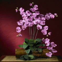 Gorgeous Orchids Arrangement! ☆