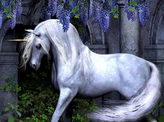 Unicorns are magical,this picture of the unicorn makes it look real...I wonder if it is