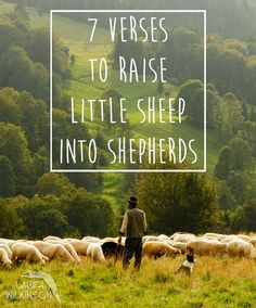 These verses will simplify and bring into focus what exactly God wants us to do with His word. Here are 7 verses that will help you raise your little sheep into shepherds.