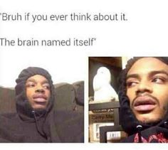 Best Hits Blunt Memes about smoking weed. Hit blunt & laugh to humorous stoners & the best funny marijuana memes & blunt memes Memes Humor, Dc Memes, Funny Memes, Jokes, Funniest Memes, Sarcasm Meme, Humor Videos, Funny Cute, The Funny