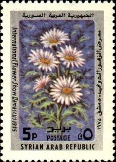 Stamp: Camomile (Syria) (Intl. Flower Show) Mi:SY 1294,Sn:SY 706,Yt:SY 423