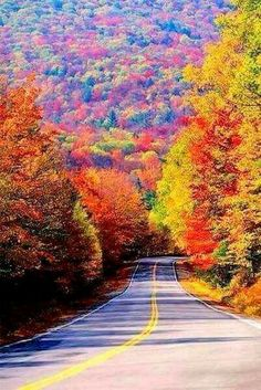 These 11 Towns In West Virginia Have The Most Breathtaking Scenery In The State Only In Your State is part of Fall foliage - Beautiful World, Beautiful Places, Beautiful Pictures, Towns In West Virginia, Virginia Usa, Autumn Scenery, Fall Pictures, Usa Pictures, Colorful Pictures