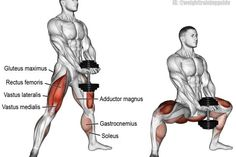 The dumbbell sumo squat (aka dumbbell plie squat) is great for learning squat fo. The dumbbell sumo squat (aka dumbbell plie squat) is great for learning squat form, especially how to keep your knees out and torso upright as you squat. Fitness Workouts, At Home Workouts, Fitness Tips, Fitness Motivation, Fitness Memes, Exercise Motivation, Fitness Goals, Video Fitness, Fitness Watch