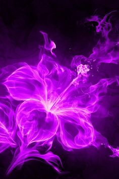 Neon Purple Wallpaper