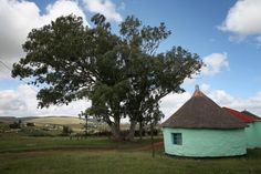 Nelson Mandelas childhood home of Qunu. Under those trees he was taught. Man Of Peace, Mud Hut, First Black President, Human Rights Activists, Black Presidents, Apartheid, Nobel Peace Prize, Famous Words, Nelson Mandela