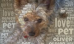 How to Use Wordfoto – great for vocabulary and poetry…this would make for a great Q or mini-feature for the portrait section of your yearbook! Teaching Technology, Technology Tools, Technology Integration, Educational Technology, Ipad Art, English Language Arts, School Classroom, Classroom Decor, Love Pet
