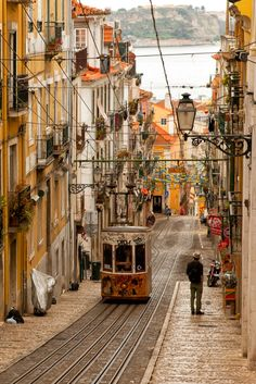 lisbon is getting pretty and pretty
