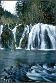 @ heather penor, & @ heather stafford!  We r totally doing dis!!!  Warm clothes & running shoes ladies! Olympic Peninsula Waterfall Trail