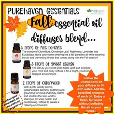 Who doesn't love the crisp refreshing scent of fall. Recreate it in your home without the use of toxic chemicals! ❤️ Reach out today to order and I'm always happy to answer questions! www.purehavenessentials.com/AmyLoews