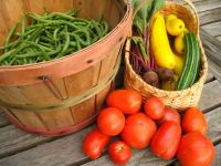 Outing: Offer a cooking class at the church that uses local ingredients. Participants get to eat their food after they cook it. February 24 or Over Easy Cafe, Eating Organic, Organic Plants, Whole 30, Cooking Classes, Get Healthy, Farmers Market, Vegetable Recipes, Natural