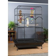 Empire Large Bird Cage 3157 Prevue Pet Products Parrot Pet, Parrot Toys, Macaw Cage, Bird Cage Stand, Large Bird Cages, Pet Supply Stores, Metal Birds, Bird Toys, Bedding Shop