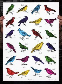 Birds — John Dilnot