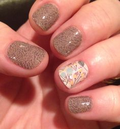 Jamberry Elephant Gray and Sweet Whimsy