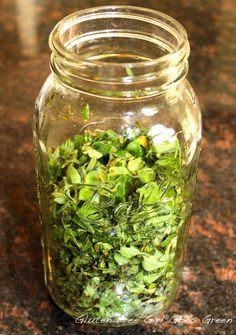 Tincture of Oregano (DIY antibiotics and anti viral) Healing Herbs, Medicinal Plants, Natural Healing, Natural Oil, Herbal Tinctures, Herbalism, Natural Health Remedies, Herbal Remedies, Natural Medicine