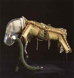 Marieaunet: Laika and her space suit 1957 first dog in space?