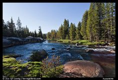 Lyell Fork of the Tuolumne River, afternoon. Yosemite National Park,Part of gallery of color pictures of US National Parks by professional photographer QT Luong, available as prints or for licensing. Us National Parks, Yosemite National Park, Beautiful Places Quotes, Tuolumne Meadows, Beautiful Landscapes, Beautiful Waterfalls, Nice View, Science Nature, Travel Usa