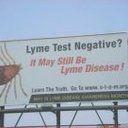 Chronic Lyme Disease: a Case Definition at Last Us Senate, Human Services, Lyme Disease, Dont Understand, Autoimmune, Chronic Pain, Investigations, The Cure