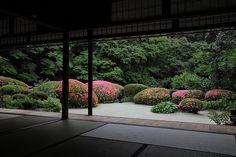 Japanese Garden Backyard, Japan Garden, Japanese Garden Design, Garden Landscape Design, Japanese House, Japanese Gardens, Japanese Architecture, Landscape Architecture, Side Garden