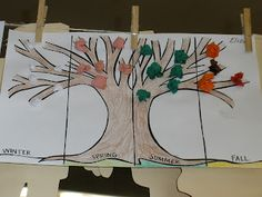 This is a great activity to do with students for a better understanding of characteristics of the four seasons. Also, under each section the student could write descriptions of the seasons. Kindergarten Science, Kindergarten Classroom, Teaching Science, Science Activities, Teaching Art, Weather Kindergarten, Teaching Ideas, Mad Science, Science Ideas
