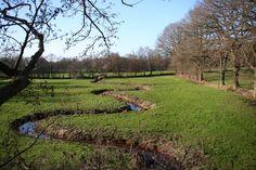 Doorkijkjes en veldnamen rondom het Anlooërdiepje