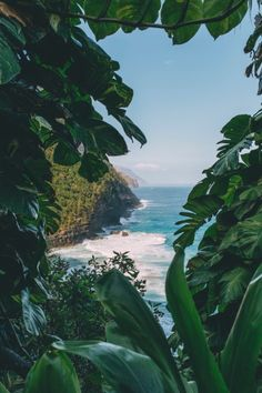 Beach Aesthetic, Nature Aesthetic, Travel Aesthetic, Strand Wallpaper, Beach Wallpaper, Nature Wallpaper, Places To Travel, Places To Go, Hawaii Life