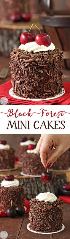 Black Forest Mini Cakes - adorable chocolate-cherry cakes, with a fresh cherry on top! | From http://SugarHero.com